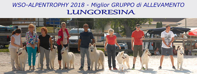 alpentrophy best breeding group, lungoresina, wso, pastore svizzero ianco, white swiss shepherd,berger blanc suisse